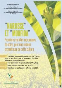 Affiche de présentation de Narjisse et Moufida, deux variétés INRA de colza