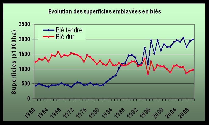 Evolution des rendements nationaux des blés (1960-2008)