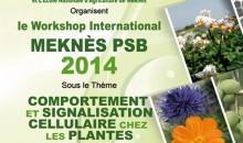 Collaboration à l'organisation du Workshop international PSB, Meknès 05 juin 2014