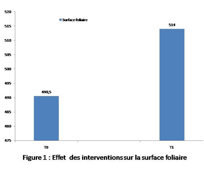 Figure 1: Effet des interventions sur la surface foliaire