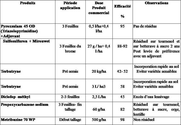 Tableau des principaux herbicides  les plus efficaces contre le brome rigide  dans le blé.