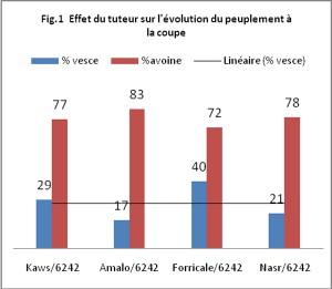 Figure 1 : Effet du tuteur sur l'évolution du peuplement à la coupe