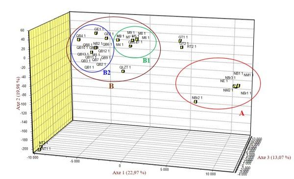 Répartition des génotypes du figuier étudiés dans le plan défini par les axes 1, 2 et 3 de l'AFC de l'analyse par les marqueurs SSR