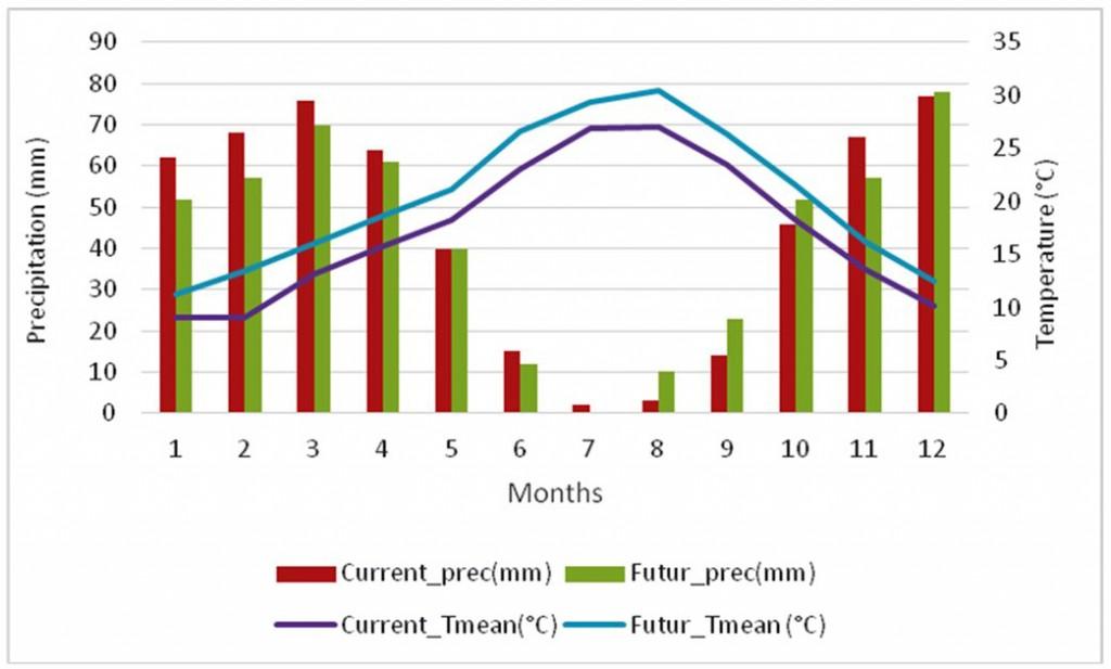 Figure 1 : Précipitations et températures moyennes mensuelles actuelles et futures (2030) à Ras Tabouda.