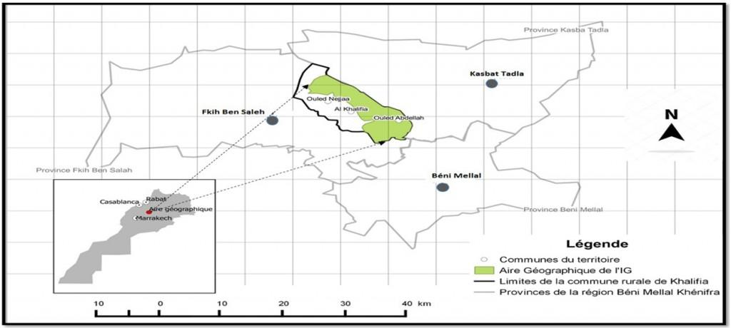 Figure 1. Aire géographique de l'IG de la grenade Sefri Ouled Abdellah
