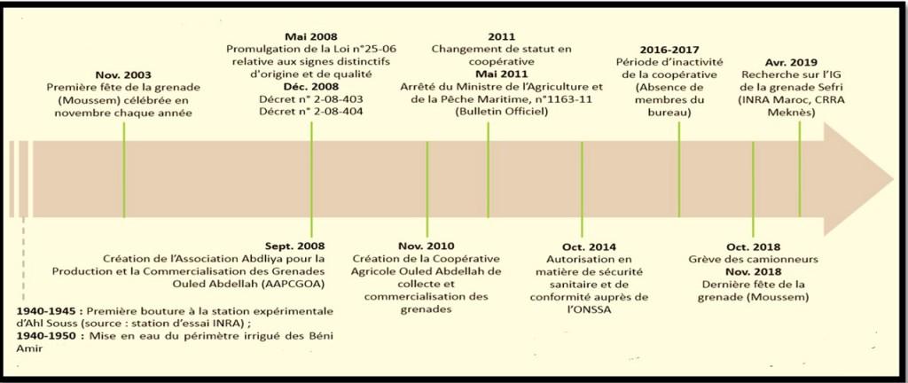 Figure 2. Frise chronologique de la construction de l'IG de la grenade Sefri Ouled Abdellah