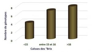 Figure 3 : Répartition des génotypes de grenadier en fonction des classes de °Brix