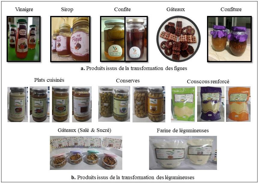 Figure 1. Produits issus de la transformation des figues et des légumineuses alimentaires